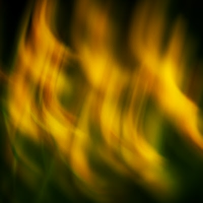 Abstract photo of some dandelions flowers at springtime
