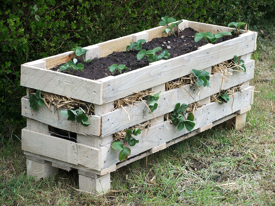 How to make a better strawberry pallet planter lovely greens - Jardiniere en palette ...