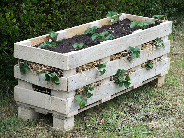 how to build a strawberry planter box
