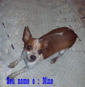 Esse é o Nino muito levado
