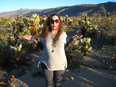 Holla at Cholla Gardens in Joshua Tree National Park California