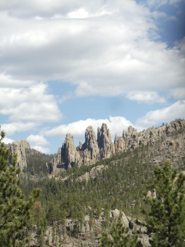 Black Hills of South D...