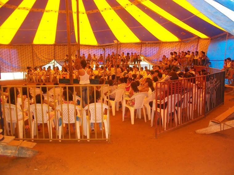 Alunos visitando o Circo Biribita