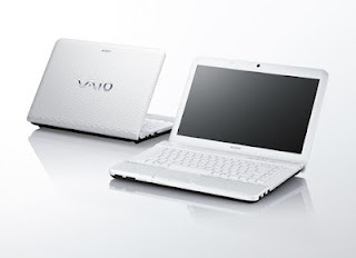 Notebook Sony Vaio VPCEG28FG
