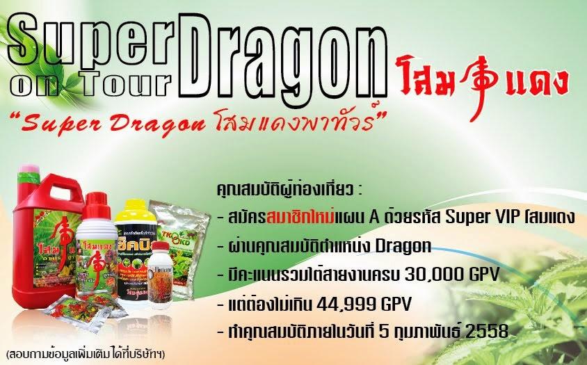 Super Dragon โสมแดงพาทัวร์