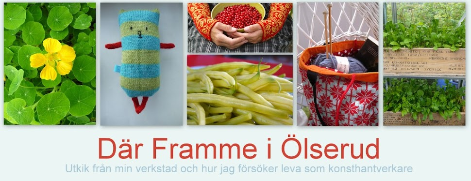 Dr Framme i lserud