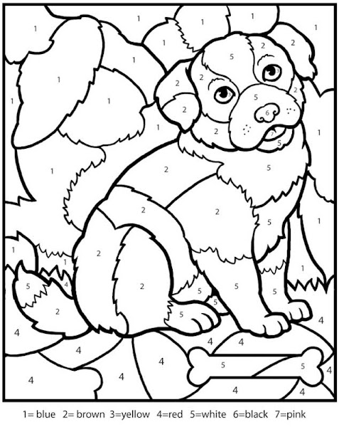 Dog Color by Number Coloring Pages