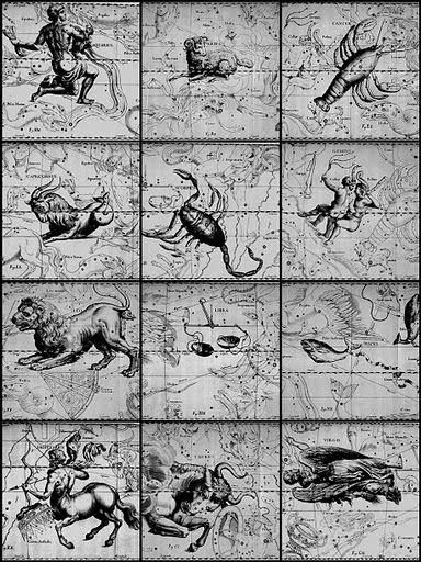 zodiaco da vinci