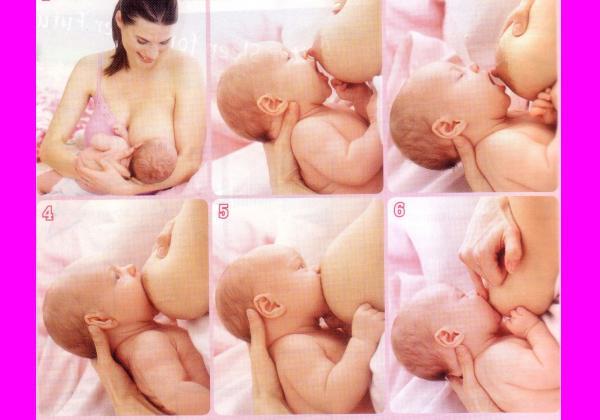 Cara Menyusui Bayi Yang Benar Cara Menyusui Yang Benar