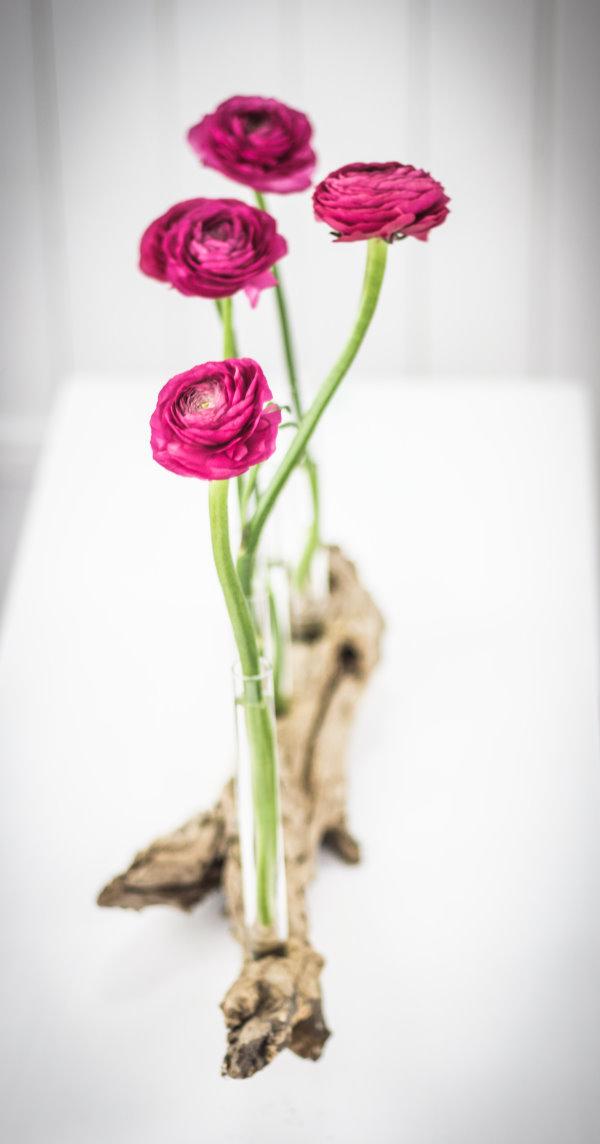 DIY Treibholz-Vase mit Frühlingsblumen