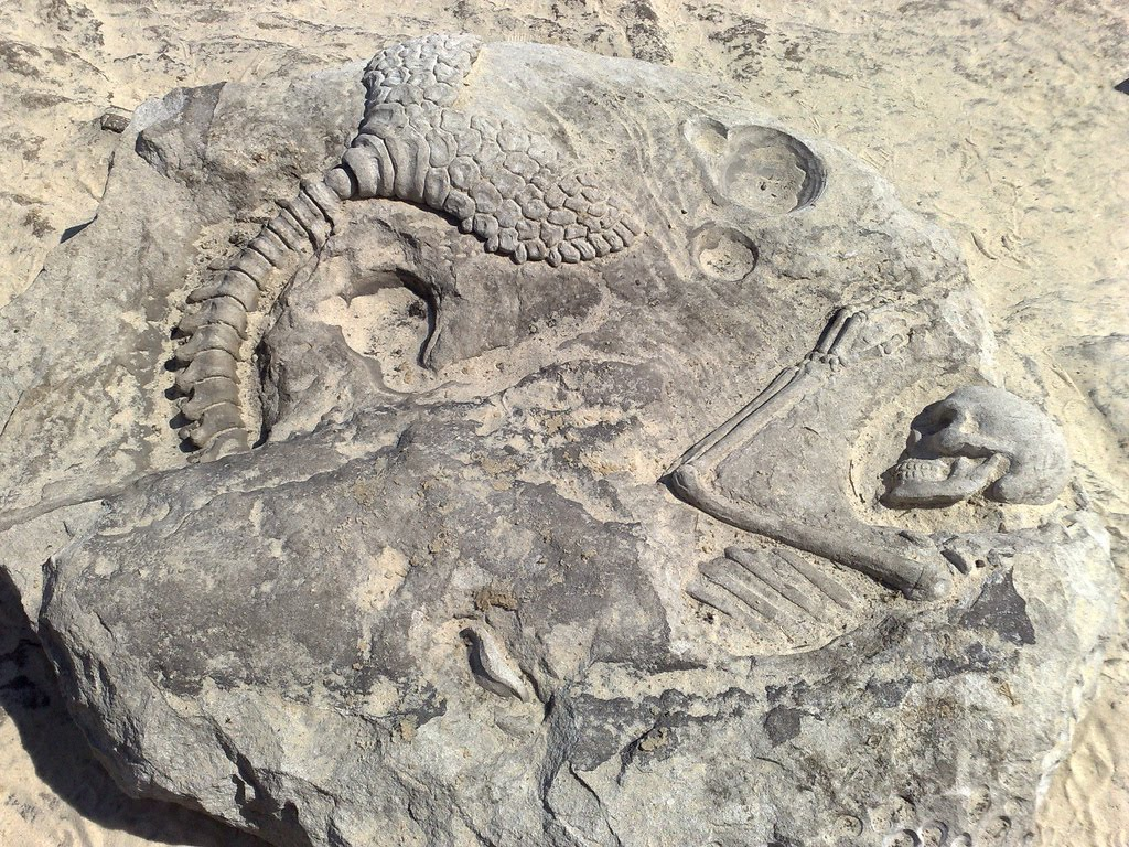 mermaid%2Bfossil%2Bsculpture.jpg