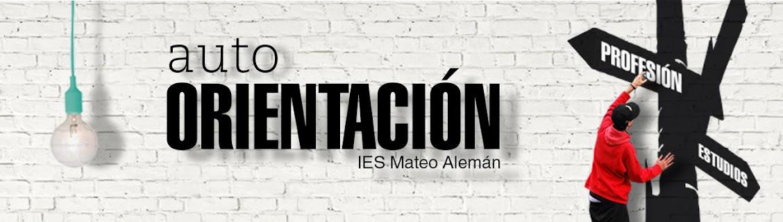 IES MATEO ALEMAN