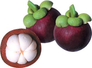 kulit buah manggis