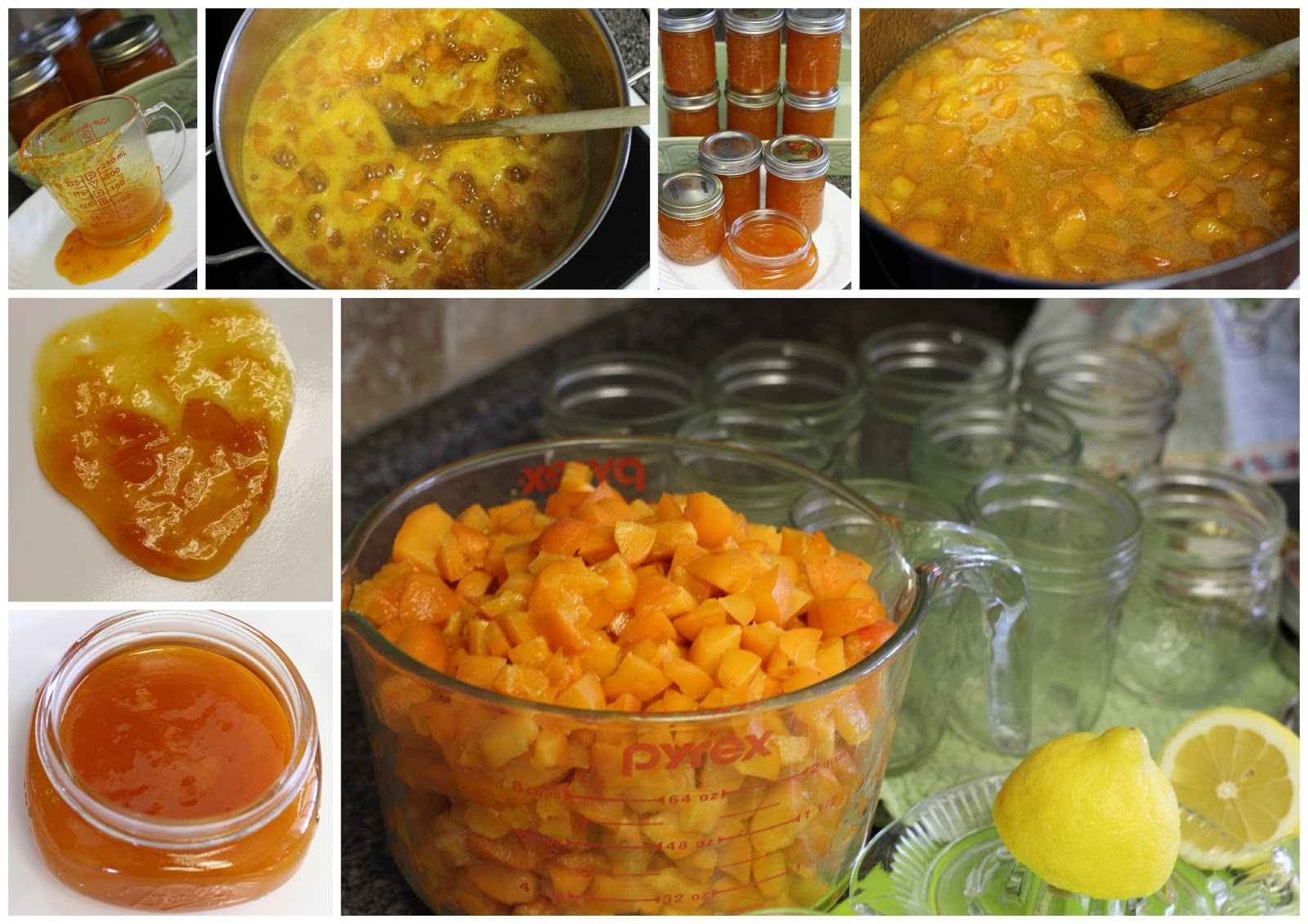 Mennonite girls can cook old fashioned apricot jam for Peach preserves no pectin