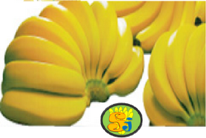 Pisang Cavendish Label SJ
