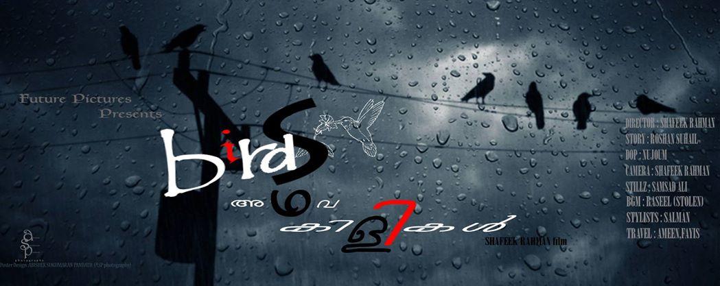 Birds Adhava Kilikal Malayalam Short Film Mollybuzz
