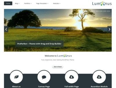 Luminus WordPress Theme