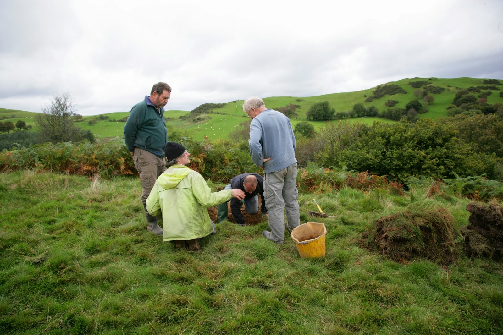 Hillfort study group