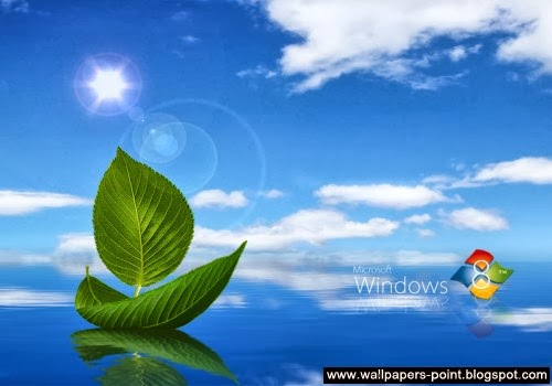 Windows 8 Wallpapers download /></div> <div class=