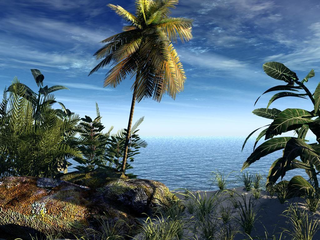 Download Desktop Hintergrund Aquarium Kostenlos - hintergrundbilder animiert