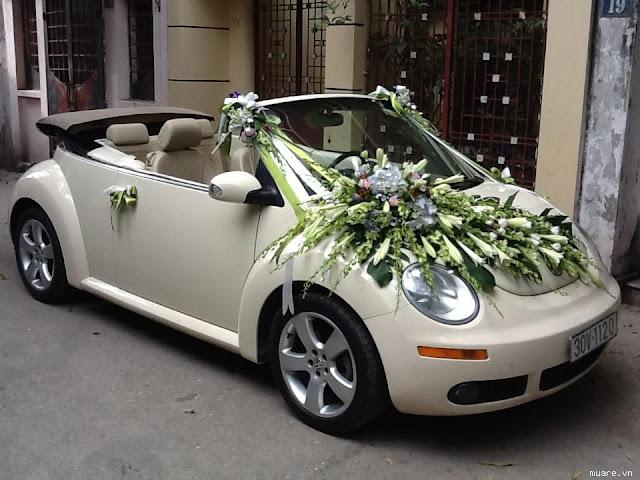 Xe cưới VolkWagen Beetle mui trần
