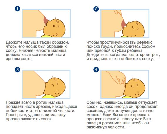 Как сделать так чтобы не было грудного молока - Kuente.ru