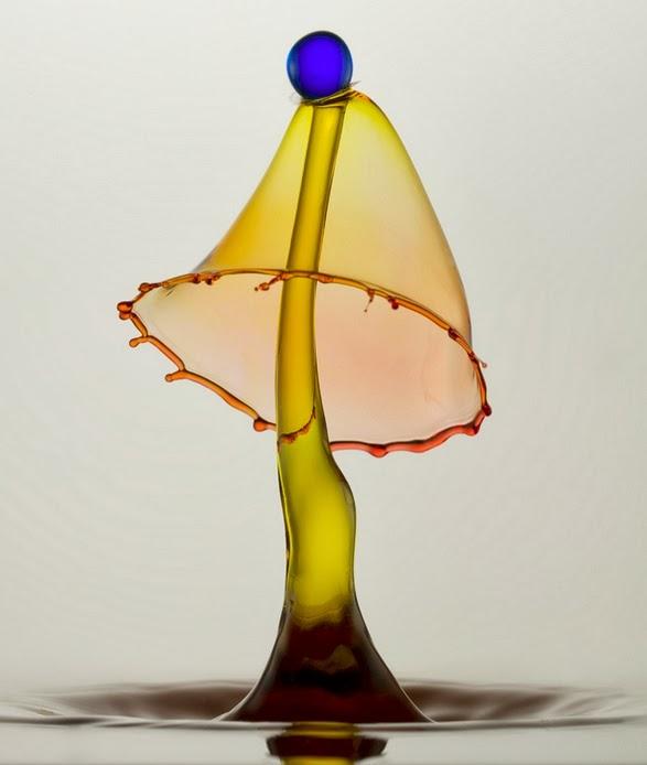 08-German-Photographer-Heinz-Maier-High-Speed-Water-Sculptures-www-designstack-co