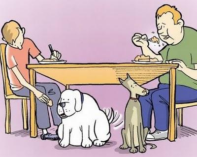 humor grafico perros y dueños