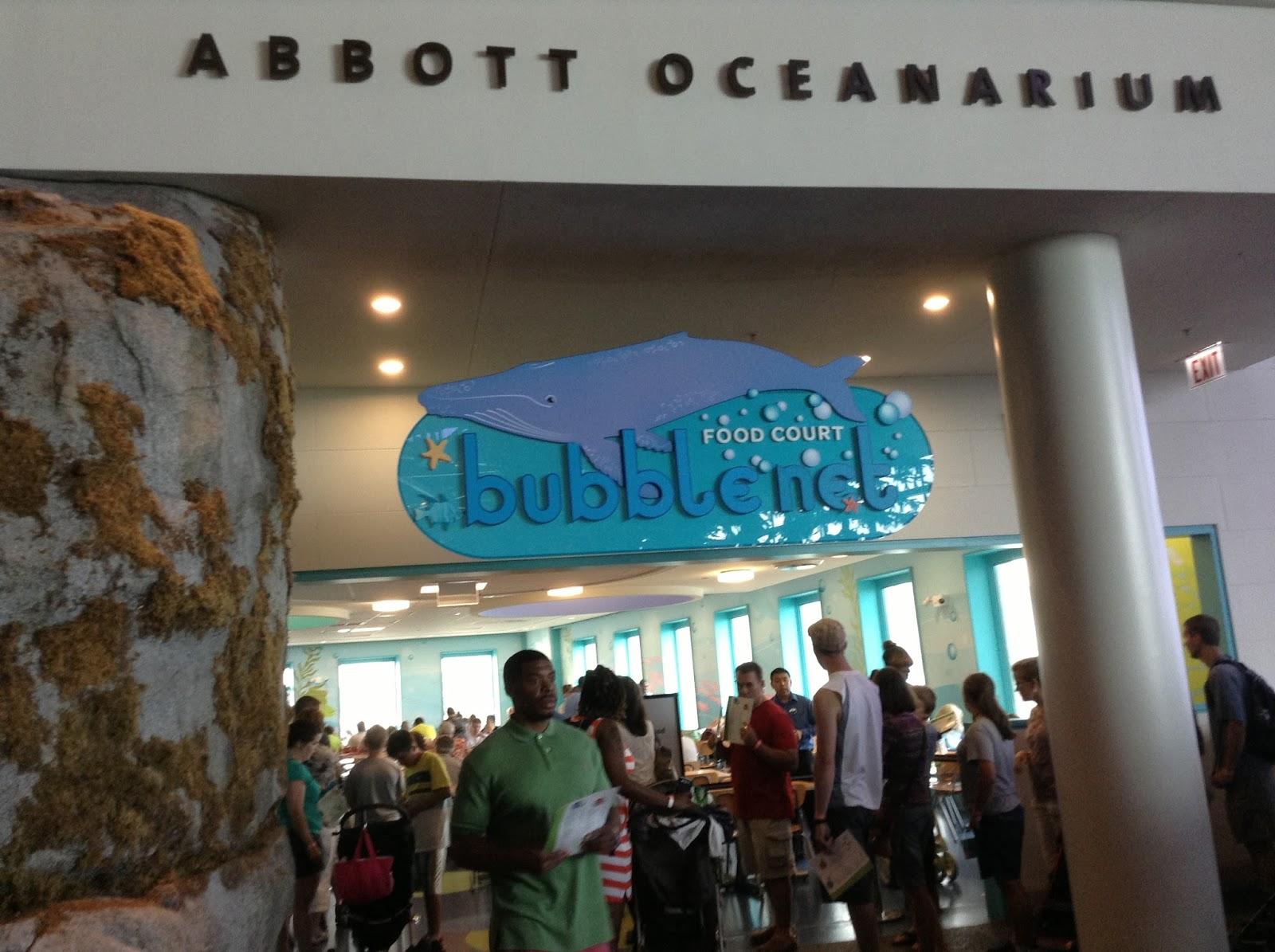 aquarium store chicago shedd aquarium shedd aquarium3