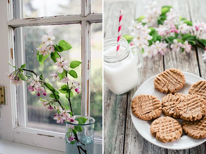 vegan-glutenfree-peanutbutter-cookies
