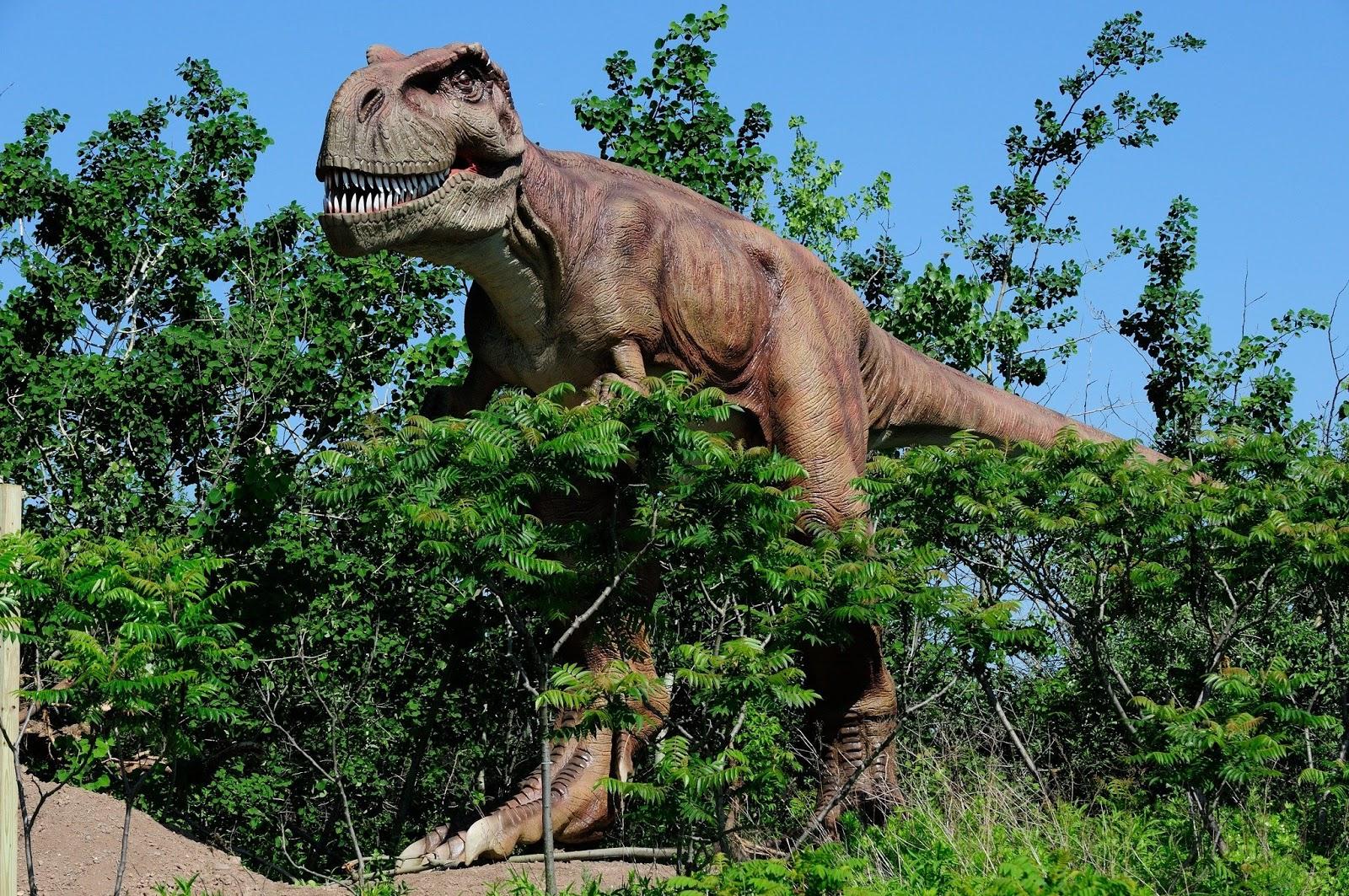 Real TRex Dinosaur