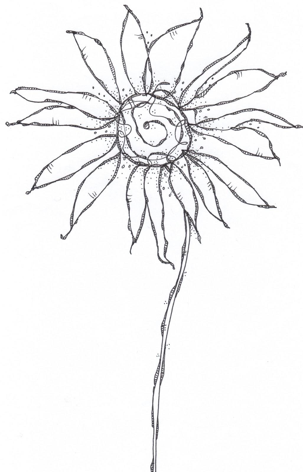 Flower Line Drawing Book : The sketchbook challenge unleashing doodle beast