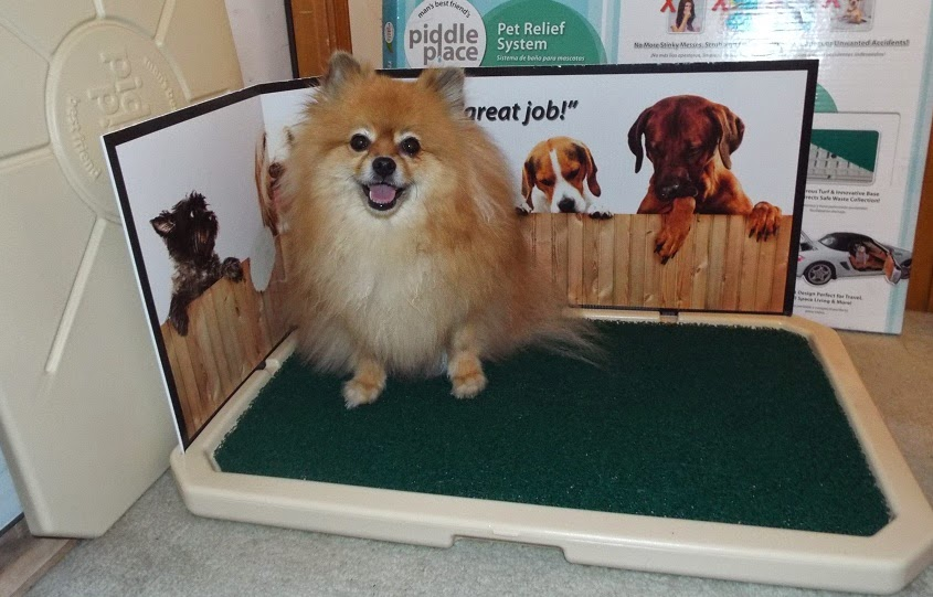 pepper 39 s paws piddle place pet product review