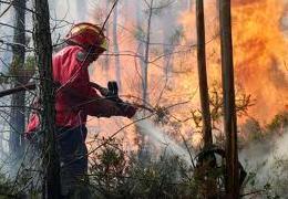 Negócio dos incêndios