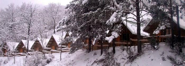 Bungalows del Camping Vall de Ribes Gerona