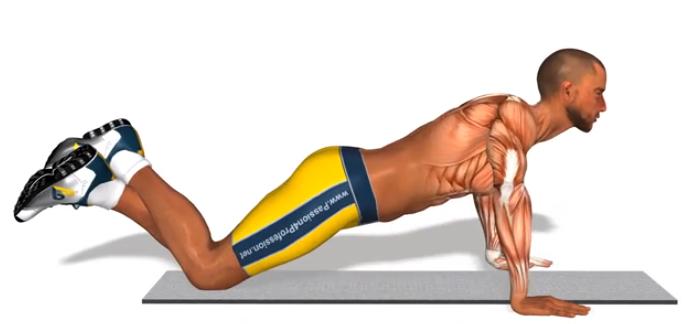 Musculation pompes tous les jours