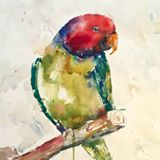 Paint Colorful Birds