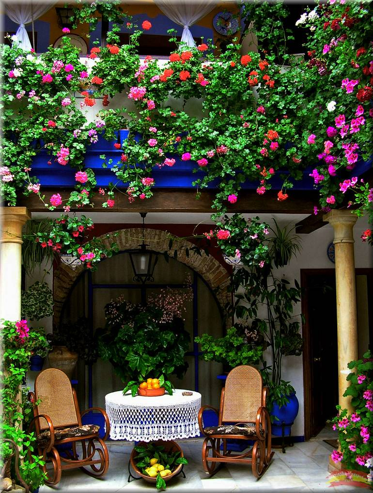 Patios de cordobas taringa - Imagenes de patios andaluces ...