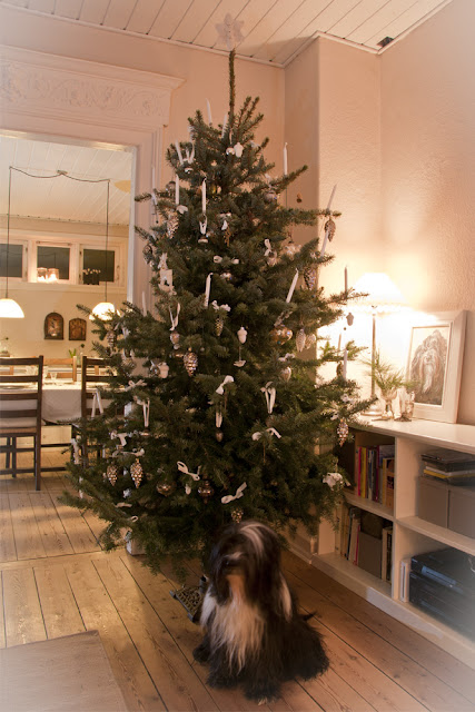 My loving home and garden: december 2011