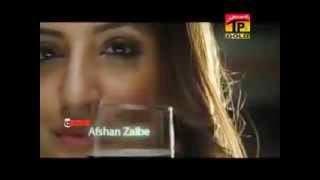 Dhola Sanu Piyar De nashiyan ch paa ke. Afshan Zebi