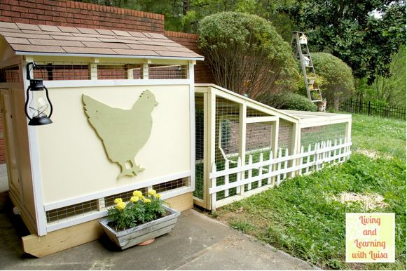 Decorating the Chicken Coop