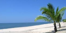 Kerala Hills & Beaches Tour