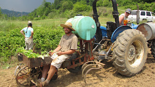 north carolina WWOOF usa
