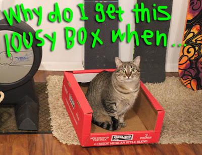 lousy-box-01