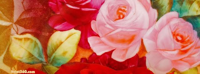 Ảnh bìa Facebook hoa hồng tuyệt đẹp - Cover FB timeline rose