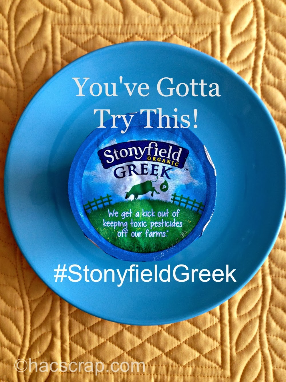 my scraps | Review StonyfieldGreek