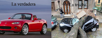 Tormenta 2012 Uruguay Árbol caído auto