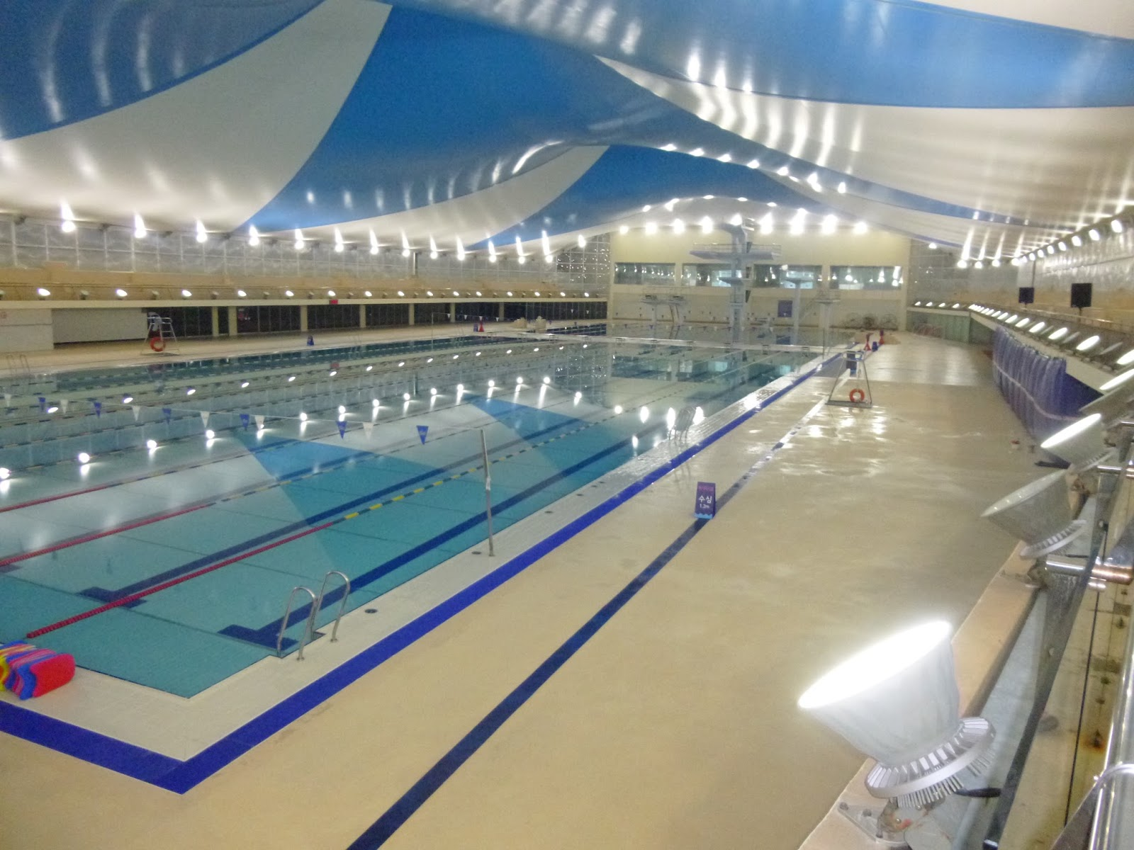 1988 seoul olympic games pool - Olympic Swimming Pool 2013