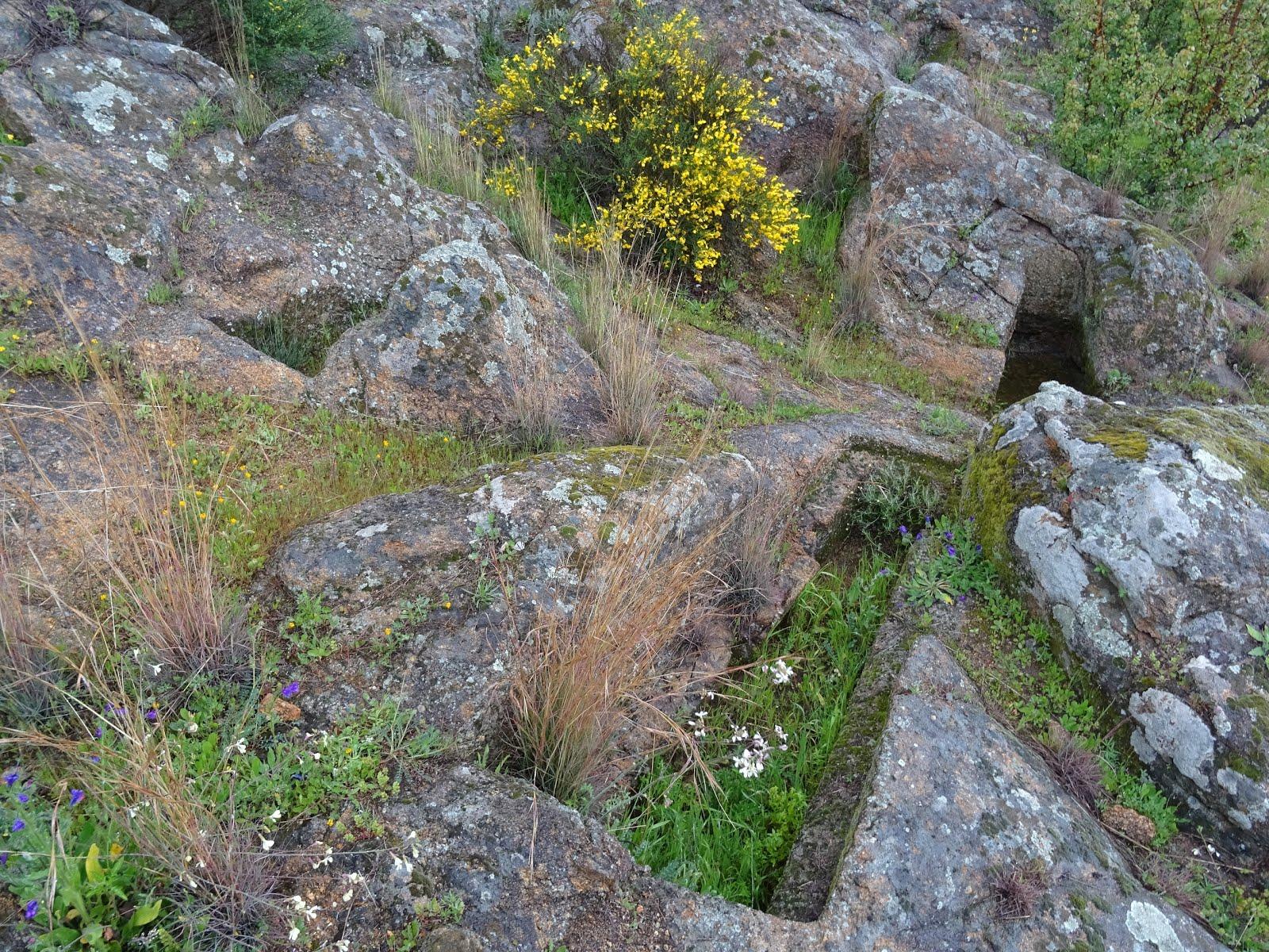 Cementerio judío y juderías de Plasencia