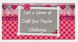 Winner Feb 2015